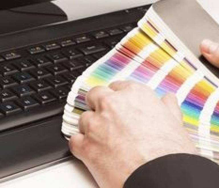 Diseñador Gráfico Off y Online