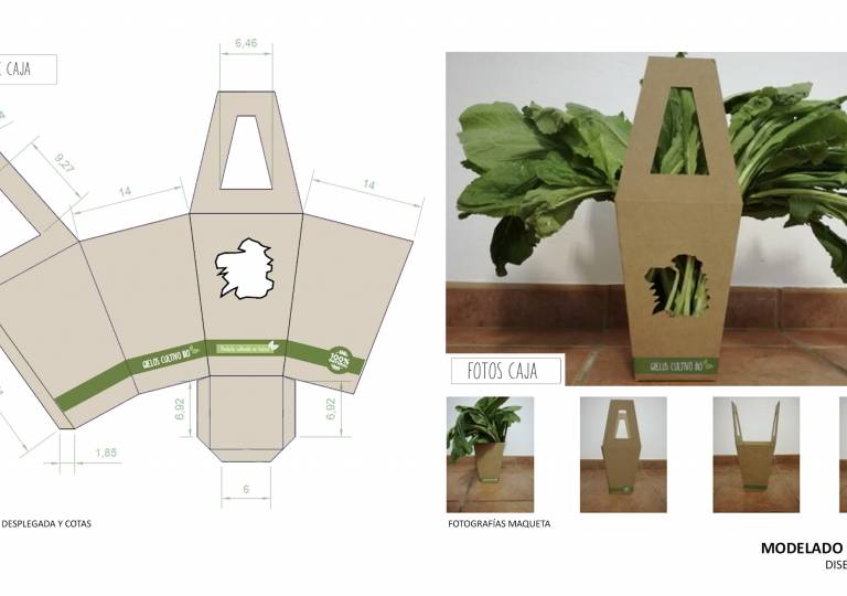 PACKAGING-MODELADO 2D